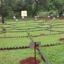 Nv Ecofarm (nv Eco Agro Tourism Pvt Ltd) in Curchorem Cacora
