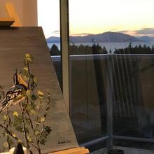 Ocean Melody Vacation Rooms in Nanaimo