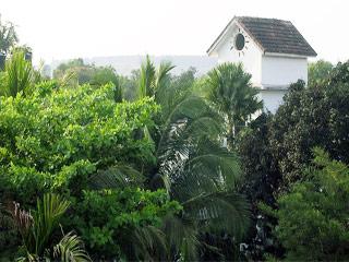 Omega Beach Resort in Goa