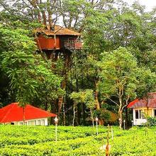 Orma Farm Resort in Murinjapuzha