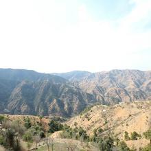 Oyo 11892 Home 2rk Shimla Hills Homestay in Shimla