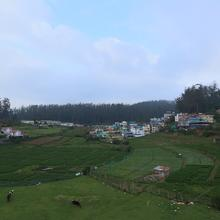 Oyo 22881 Home Elegant Stay Ooty Golf Course in Naduvattam