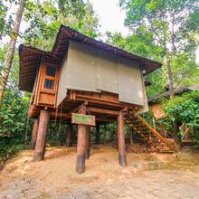 OYO Home 24861 Treehouse Stay Wayanad in Meppadi