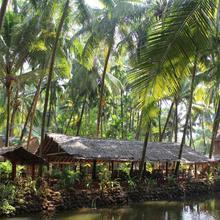 Palm Trees Ayurvedic Heritage in Agonda