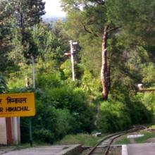 Palmpur in Palampur