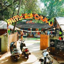 Pappi Chulo in Goa