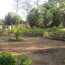 Parag Farms in Badlapur