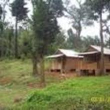 Pathalagere Homestay-kodachadri in Shimoga
