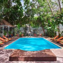Penh House & Jungle Addition in Phnom Penh