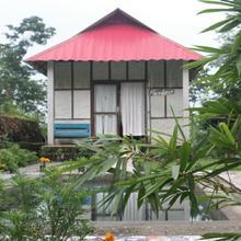 Petrichor Farms Studio Eco Education Center - Natural Homes (simplicity) in Kumai