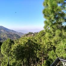Pine Villa in Kasauli