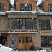 Pineview Hotel in Kunzer