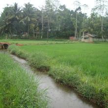 Prasad Villa in Deniyaya