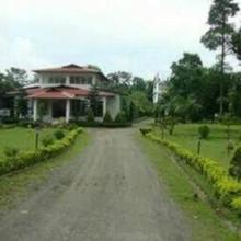 Prayag Emerald in Kaziranga