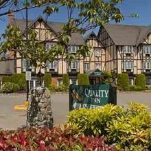 Quality Inn Waddling Dog in Victoria
