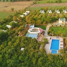 Ranthambore Tiger Inn Comfort Resort in Sawai Madhopur