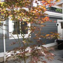 Riverfront Bed And Breakfast in New Westminster