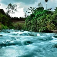 Rivertree Munnar in Munnar
