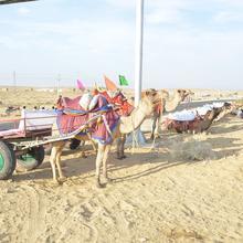 Rojani Resort in Jaisalmer