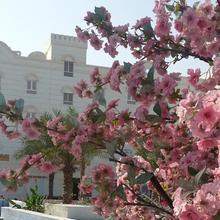 Royal Gardens Hotel in Al Khuwayriyah