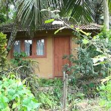 Rural Jungle Backpackers Hostel in Deniyaya