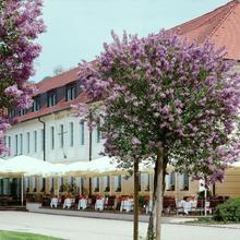 Schloss Hotel Dresden Pillnitz in Dresden