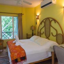 Sea Hawk Suites in Isla Mujeres