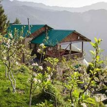 Seetalvan Orchard in Matiana