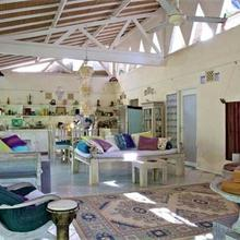 Shady Grove Healing Centre And Homestay in Sanur