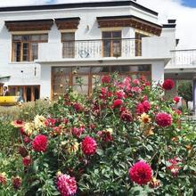 Shanila Guest House in Leh