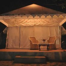 Sher Camp in Ranthambore