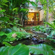 Shewe Wana Suite Resort in Chiang Mai