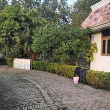 Shikhar Green in Manauri