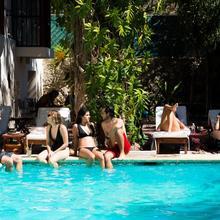 Siesta Fiesta Hostel in Merida