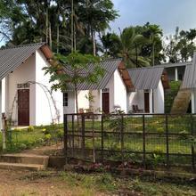 Sinharaja Forest Sanctuary in Deniyaya