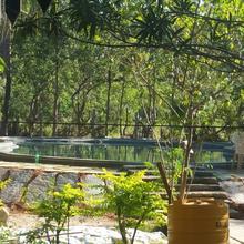 Solitude Farm in Pandavapura