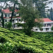 Sourenee Tea Estate in Kurseong