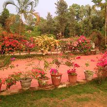 Spice Glade in Irpu