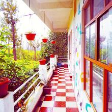 Starlit Holidays Homes Munnar in Munnar