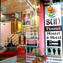 Sunflower Hostel & Hotel in Rishikesh