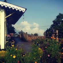 Sunshine Homestay in Tung