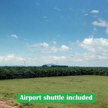 Suratthani Airport Resort in Surat Thani