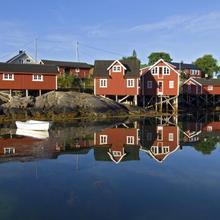 Svinøya Rorbuer in Svolvaer