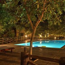 Tadoba Tiger King Resort in Khatora