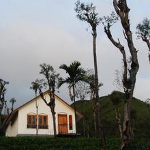 Tea Terrace Vythiri in Vayittiri