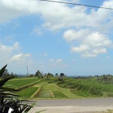 Teras Subak Jatiluwih in Bali