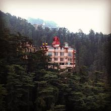 The Bodhi Tree B&b in Shimla