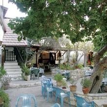 The Bunch Of Grapes Inn in Pakhna