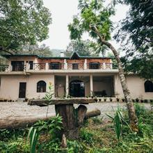 The Camphor Tree - Pura Stays in Bhimtal