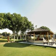 The Indigo Farm in Murthal